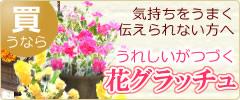 人気ブリザーブドフラワー通販の花グラッチュ
