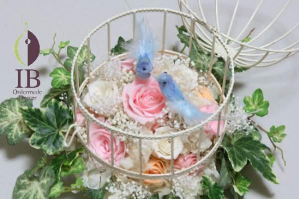 見つめあう青い鳥