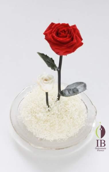 ガラスドームのお花 プリザーブドバラ チェリーレッド
