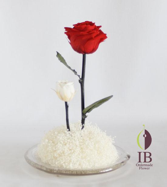 プリザードフラワー バラ アンティークホワイト