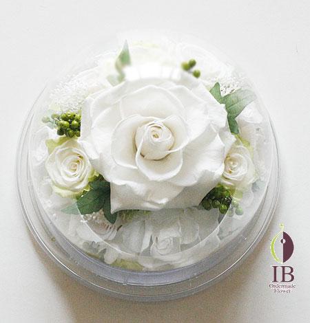 プリザーブドフラワ- 白バラ ドーム装飾