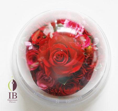 プリザーブドフラワ- 赤いバラ ドーム装飾