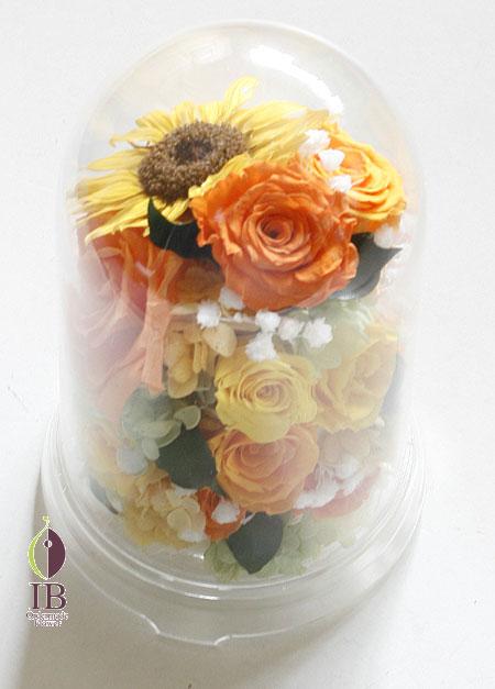 プリザ バラ サンセットオレンジ