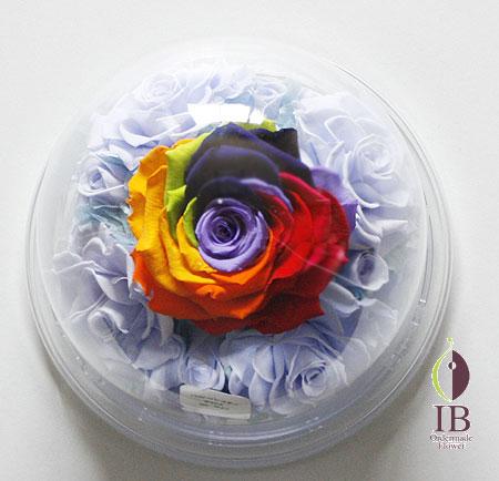 プリザ レインボーカラーのバラ