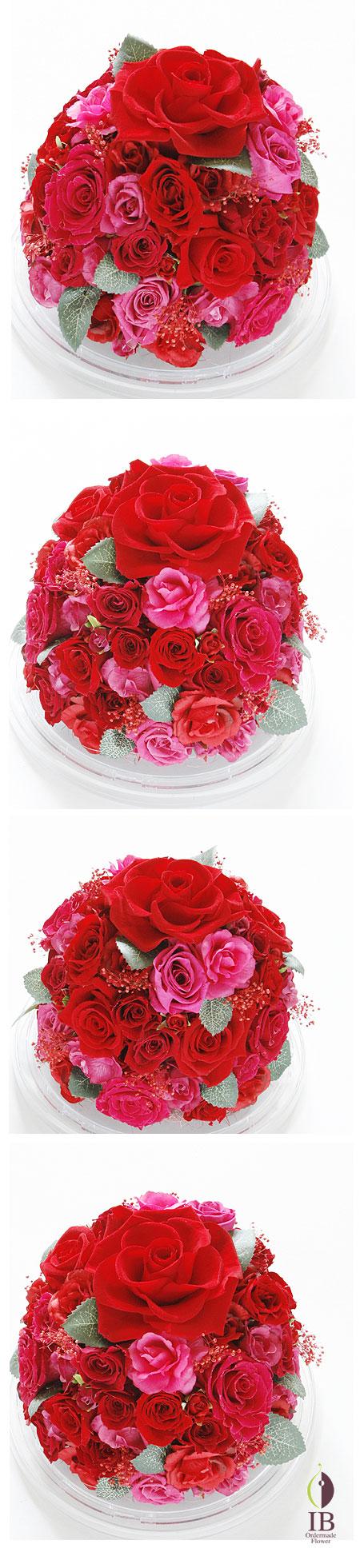 プリザ 赤いバラ60輪